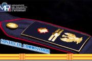 ATTRIBUZIONE DENOMINAZIONE DI COORDINATORE AI SOSTITUTI COMMISSARI